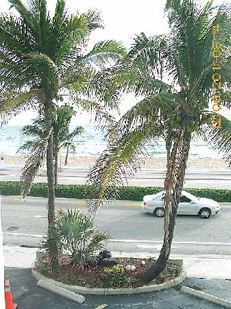 Beach Plaza Hotel: The front parking area