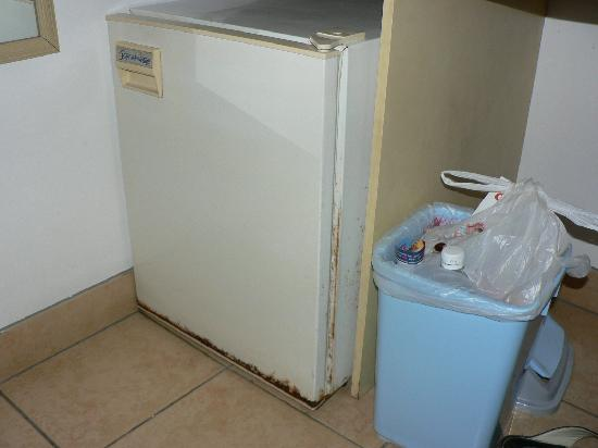 Airlie Beach Motor Lodge: Rusty fridge and unemptied bin