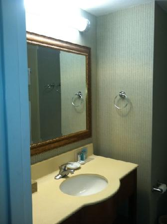 Hampton Inn Winter Haven: bathroom