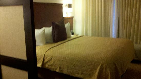 Hyatt Place Jackson/Ridgeland: Bed