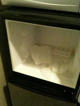 Stanford Inn: Melted freezer