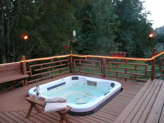 Green Cat Guest House and B&B: Hot tub under the stars... the rural beauty of the Kitsap Peninsula, mountains & waterways