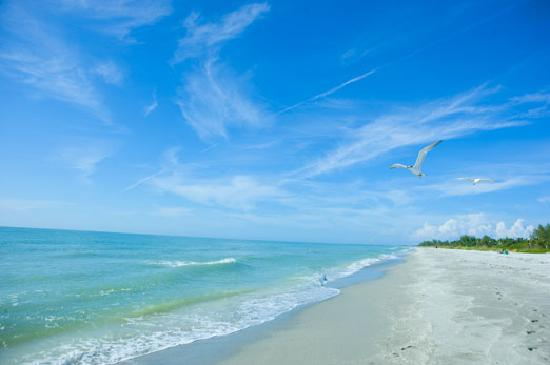 Google Map Captiva And Sanibel Islands