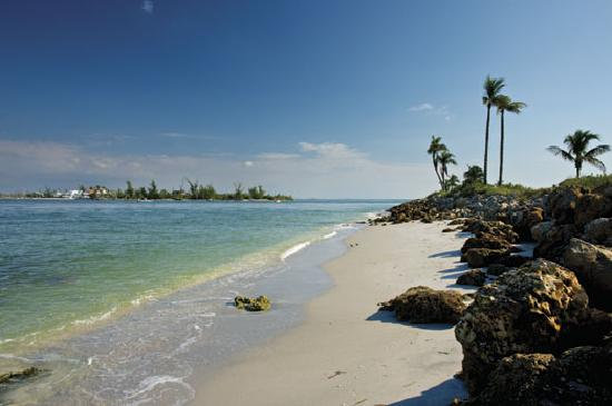 Captiva Island Shoreline