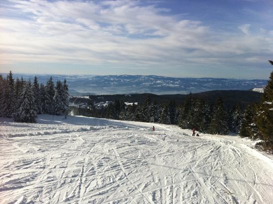 Kopaonik bed and breakfasts