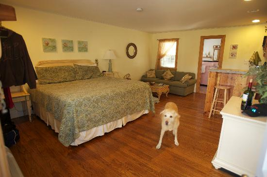 Cape Pines Motel: Pet-friendly king w/ sleep sofa & kitchenette