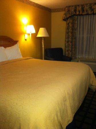 Country Inn & Suites By Carlson Lake City: king bedroom