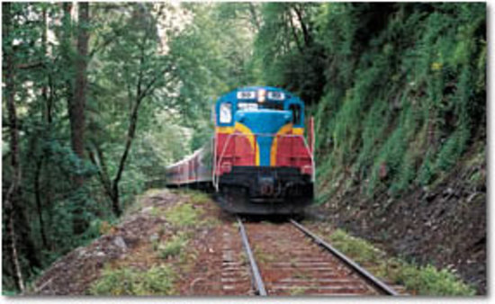 Mt hood railroad hood river or hours address tickets tours attraction reviews for Hood river swimming pool hours