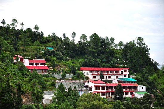 Blue Pine Resort