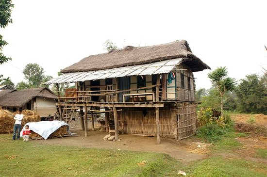 Koshi Tappu Wildlife Camp