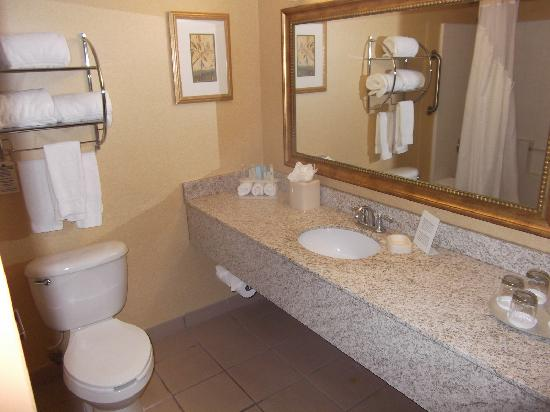 Holiday Inn Express Phoenix Airport (University Drive): washroom