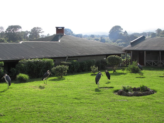 Photo of Ngorongoro Rhino Lodge Ngorongoro Conservation Area