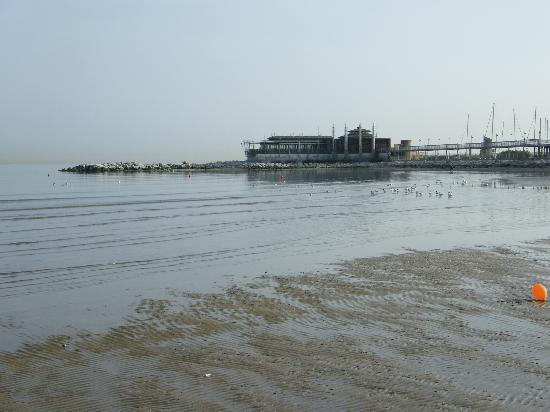 Canoa Club Rimini : Rimini Beach view 