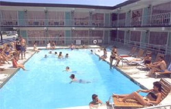 Panoramic Motel Apts: The large heated pool at the Panoramic.