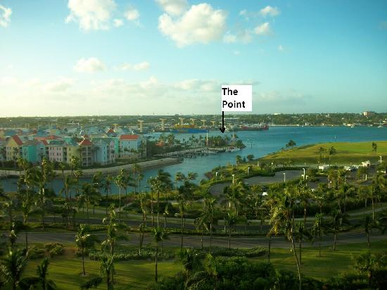 The Point: Ubicación: Harborside Resort, excelente vista