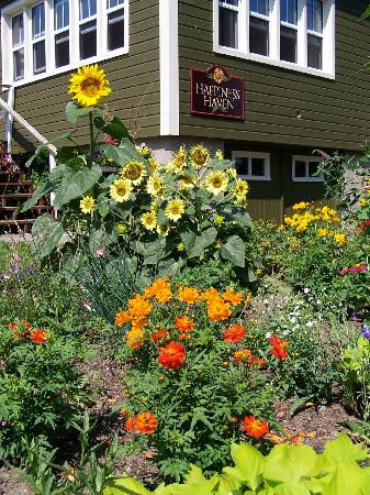Happiness Haven Bed & Breakfast: our flower garden