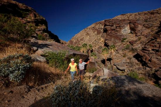 Palm Springs is an outdoor paradise for nature lovers