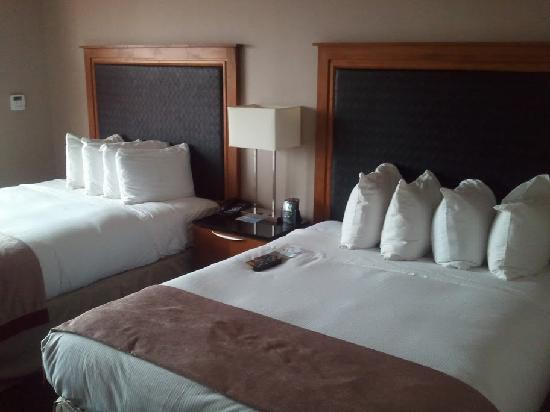 Hilton Baltimore BWI Airport: Beds