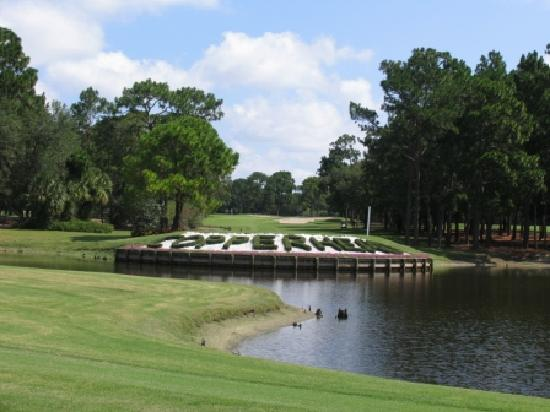 Palm Harbor, FL: Innisbrook is home of the famed Copperhead, site of the PGA TOUR's Transitions Championship play