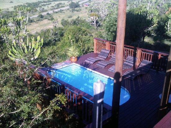 Addo Afrique Estate: View from the &#39;Honeymoon&#39; suite balcony down onto the pool