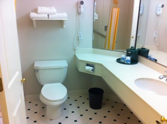 La Quinta Inn &amp; Suites Flagstaff: Broken toilet