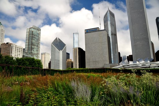 Chicago Photography Tours and Workshops by Jason Wolf Digital Images