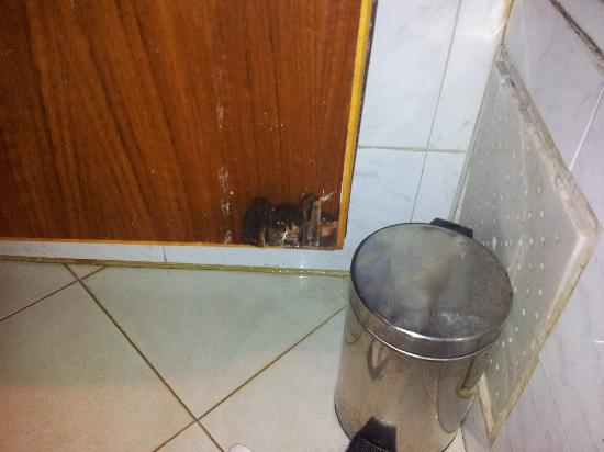 Residence Amina: water leak, mouldy unit and slippery floor