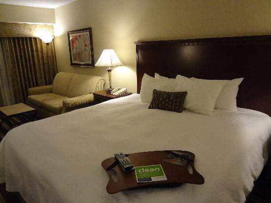 Hampton Inn Boston-Natick: Nice comfortable bed with sofa sleeper