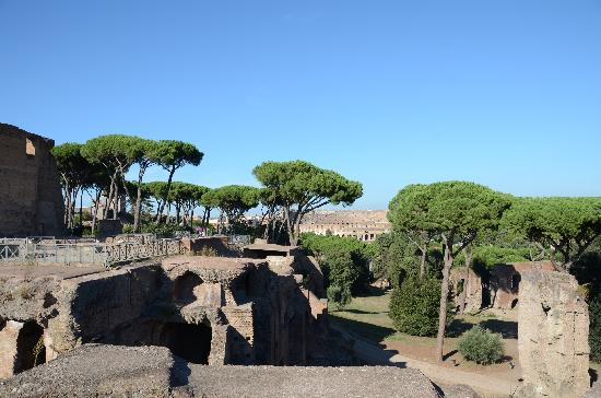 Photos of Palatine Hill, Rome