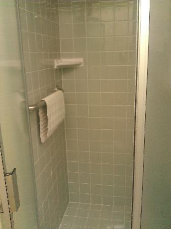 BEST WESTERN PLUS Encina Lodge &amp; Suites: Nice shower