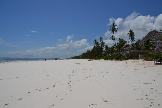 Matemwe, Tanzania: the beach