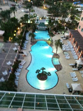 View of the pool from my room picture of moody gardens - Moody gardens hotel galveston texas ...