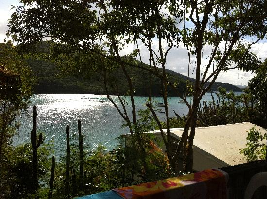 Maho Bay Camps: view from A8