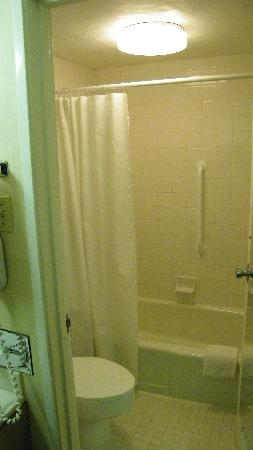 Palm Garden Hotel: shower