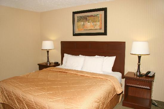 Comfort Inn Traverse City: room with king bed