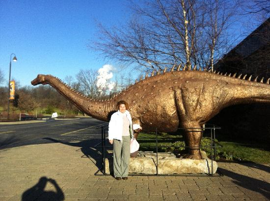 Botanical Gardens View Picture Of Creation Museum