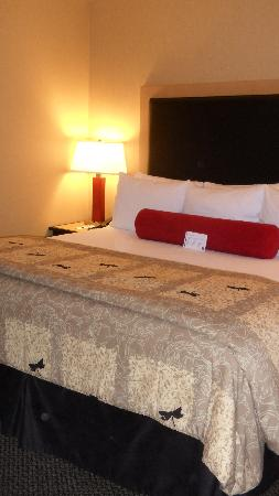 Cambria Suites: bed