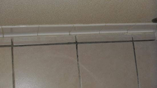 Wyndham Garden Madison Fitchburg: tile floor with crumbling grout