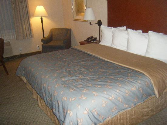 Silver Cloud Inn - University: King size bed and lounge chair