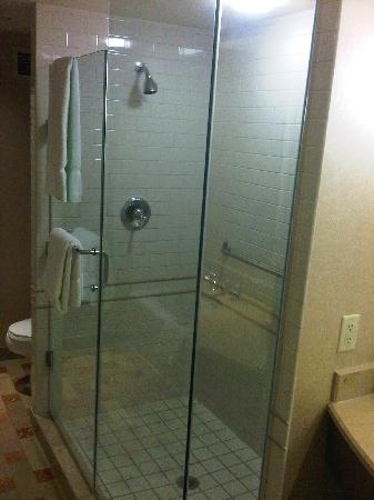 Orillia, Canada: Stand Up Shower