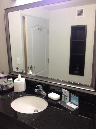 Hampton Inn by Hilton Toronto Airport Corporate Centre: King Bedroom (Bathroom)