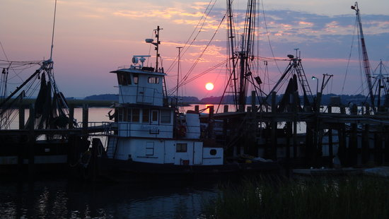 Why we will continue to love 11th street dockside in 2016