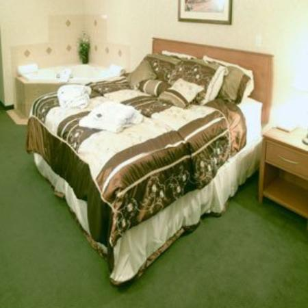 Rosslyn Inn and Suites: Guest Room