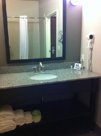 BEST WESTERN PLUS Austin Airport Inn &amp; Suites: bathroom
