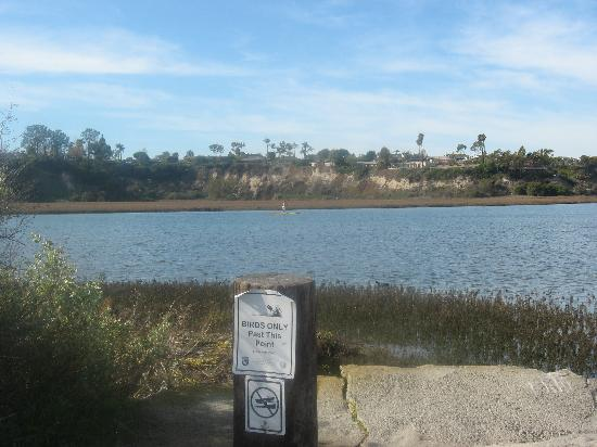 Its All About The Water Picture Of Newport Beach Orange County Tripadvisor
