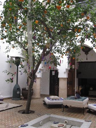 Dar Charkia: Courtyard in the Rhiad