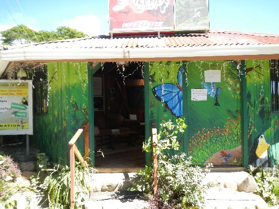 Cabinas Tina's Casitas: Front of hostel