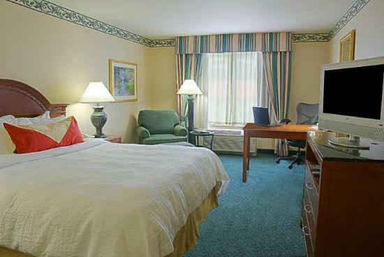 Hilton Garden Inn Houston / Bush Intercontinental Airport: Guest Room