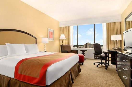 Hilton Atlanta: King Guestroom