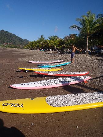 Vista Guapa Surf Camp: paddles boards